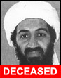 Osama bin Laden - Formerly the World's Most Wanted Terrorist