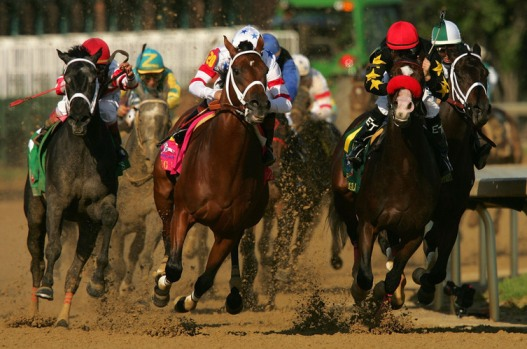 Eight Belles, 2d place finisher 2008 Kentucky Derby