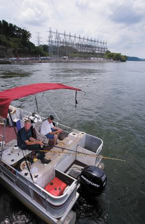 Anglers fish below thousands of feet of power lines that run from TVA's Wheeler Dam turbine systems. Those from the Shoals who work closely with the Tennessee Valley Authority said the federal agency should not be turned over to private companies. Matt McKean/TimesDaily